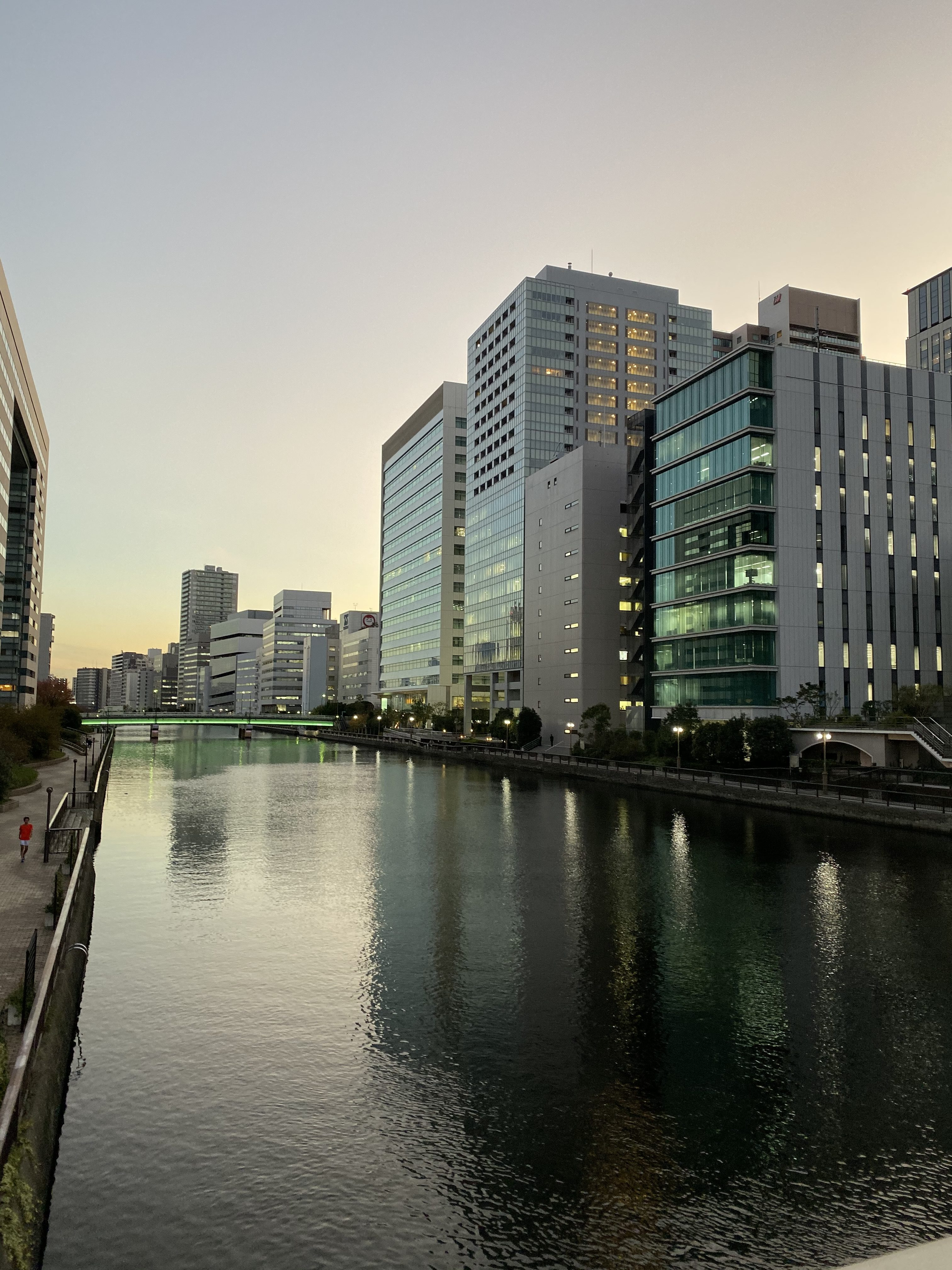 Shinagawa, Tokyo area